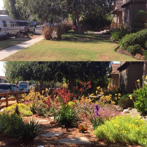 mar-vista-garden
